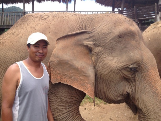 My favorite elephant, Medo, and her mahout, Toon.