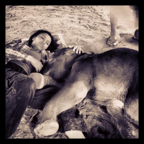 Lek Chailert consoles baby Rajah Gajah