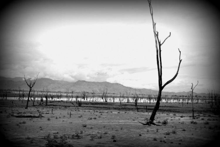 Barren landscape in Sri Lanka