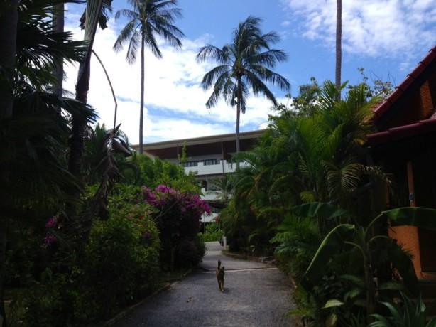 Passing the villas at Beach Republic