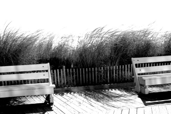 Benches at Rehoboth Beach