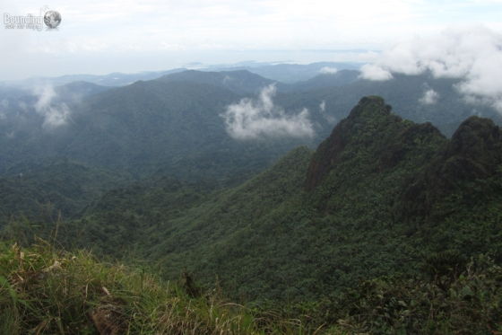 View from the peak of El Yunque in Puerto Rico