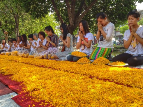 The Chiang Mai pilgrimage in April