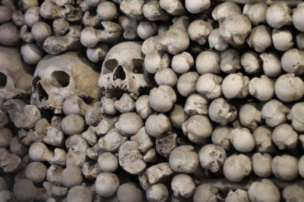 Skulls in the Church of Bones