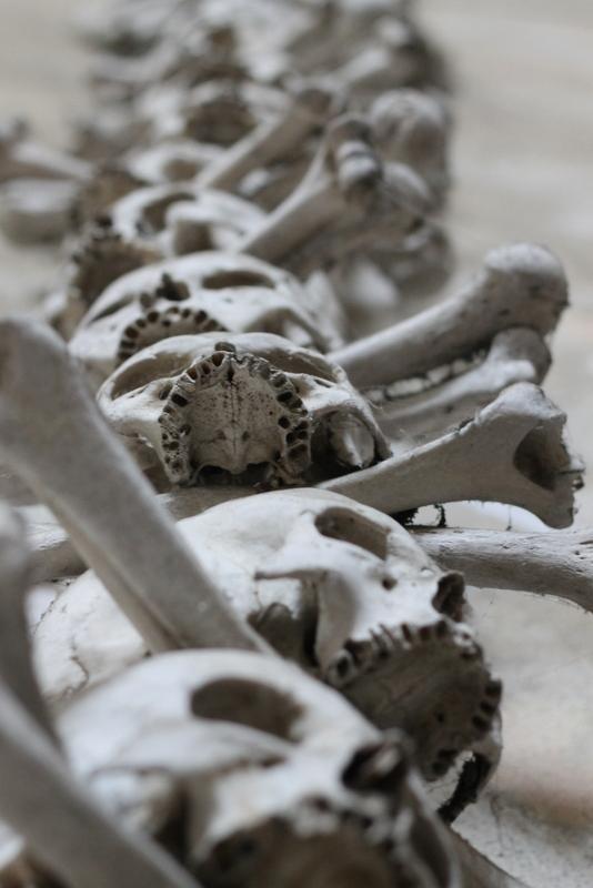 Skulls at the Church of Bones