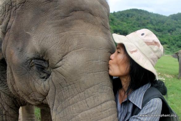 Lek Chailert and elephants