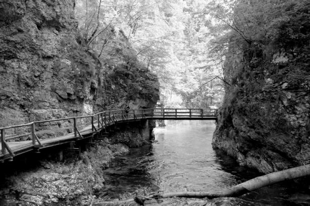 The Radovna River at Vintgar Gorge
