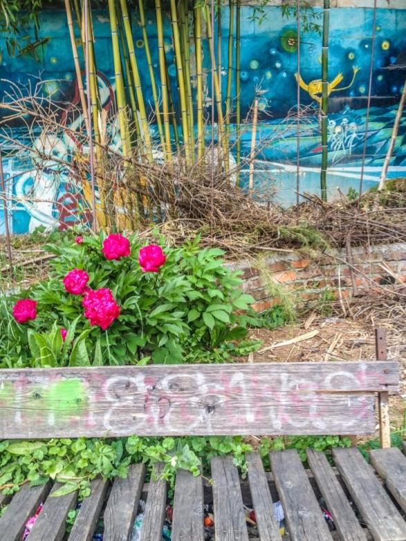 Flowers and street art