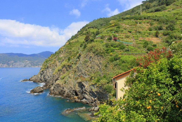 One of the many spectacular views from the Vernazza - Monterosso hike.