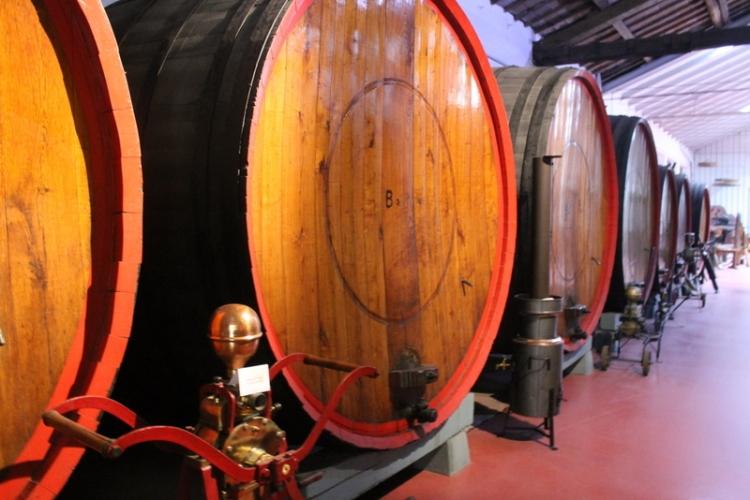 Aging Lambrusco at Gavioli winery
