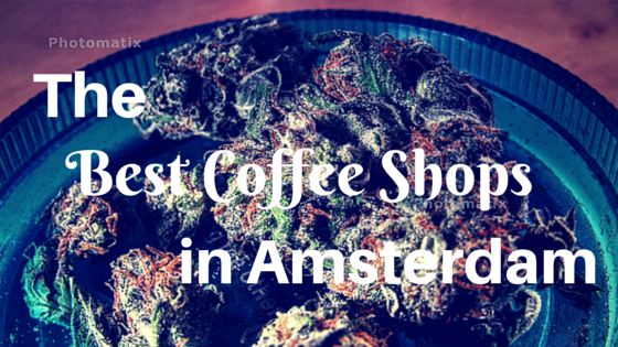The best coffee shops in Amsterdam -- add them to your list! via http://www.dtravelsround.com/2015/06/20/citylove-the-best-coffee-shops-in-amsterdam/
