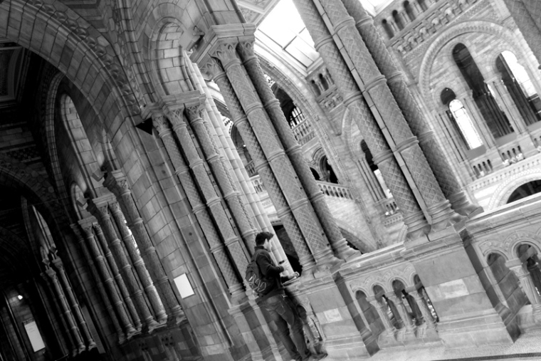 Natural History Museum | Cool things to do in London via www.dtravelsround.com
