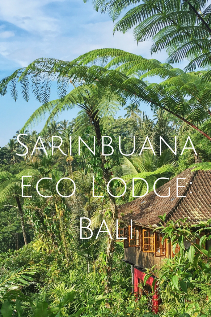 A look at the stunning Sarinbuana Eco Lodge in Bali, a sustainable lodge featuring private bungalows in the heart of the island.