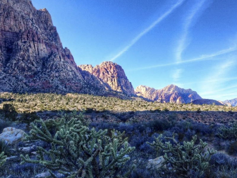 There's more to Las Vegas than The Strip. Looking for day trips from Sin City? Here's five day trips to enjoy from Las Vegas.